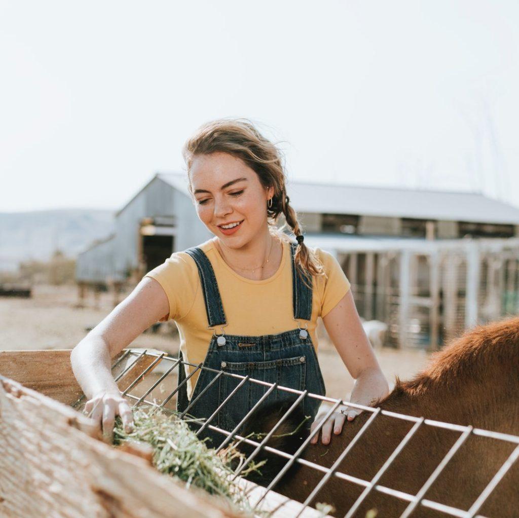 Волонтерство на фермах
